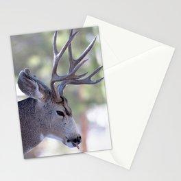 Watercolor Deer, Mule 06, RMNP, Nasty Bites Stationery Cards