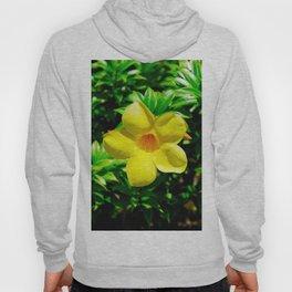 Island Flower in Dominican Republic Hoody