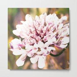 Floral trend Metal Print