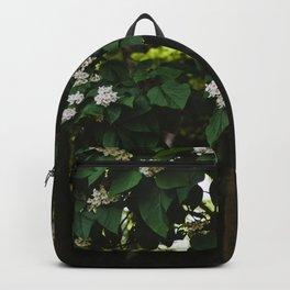 Catalpa Backpack