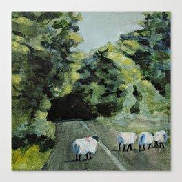 Connemara Sheep Canvas Print
