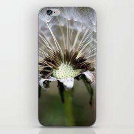 Dandelion Weed Seed iPhone Skin