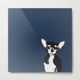 Zoe the Chihuahua Metal Print
