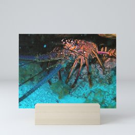 Caribbean Lobster Mini Art Print