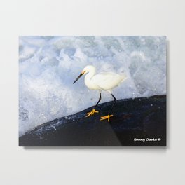 Tiny Dancer Metal Print