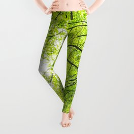 Wild nature parks I - Nature Fine Art photography Leggings