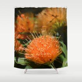 Flower Photography by Nádia A. Maia Shower Curtain