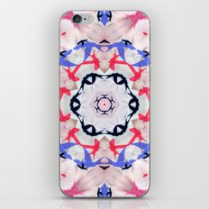 Serie Klai 018 iPhone & iPod Skin