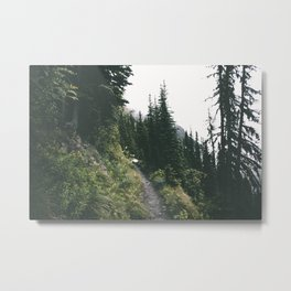 Happy Trails IV Metal Print