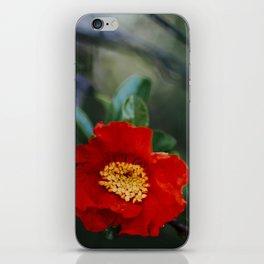 Pomegranate flower iPhone Skin