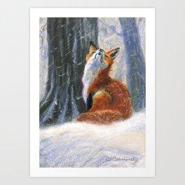 Red Fox - Vixen Sniffs the Snow Art Print