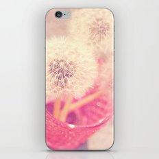 Sweet pom poms iPhone & iPod Skin