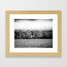 Geese Framed Art Print