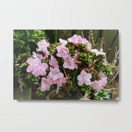 Pink Tree Metal Print
