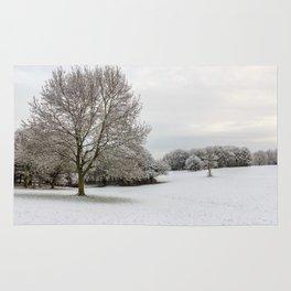 Winter is here Rug