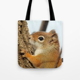 Baby Red Squirrel Close Up Tote Bag
