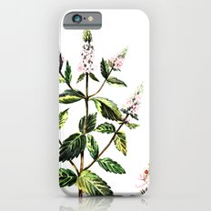 watercolor peppermint Slim Case iPhone 6s