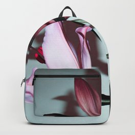 Stargazer Backpack