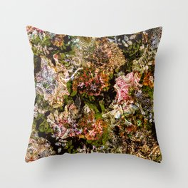 Cashmere Pattern Throw Pillow