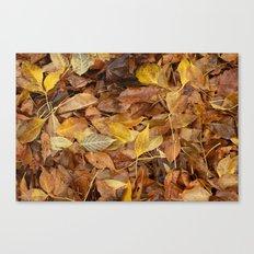 Autumn Leaves Brown Canvas Print