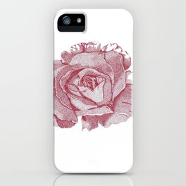 Queen Elizabeth Rose  iPhone Case