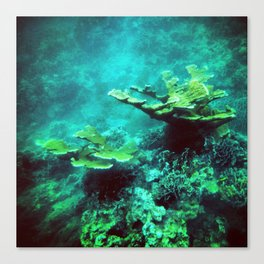 Under the Sea Coral Reef Caribbean Canvas Print
