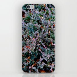Lost in the Frenzy iPhone Skin