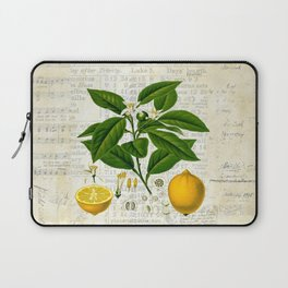 Lemon Botanical print on antique almanac collage Laptop Sleeve