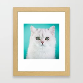 Puffy Framed Art Print