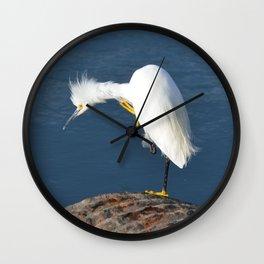 grooming egret Wall Clock