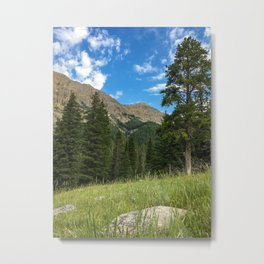 Yellowstone National Park Mountain Meadow Hike Nature Metal Print