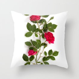 Red roses on white background Throw Pillow