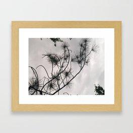 Matsunoki Framed Art Print