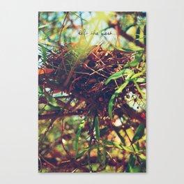 Nest Canvas Print