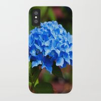 hydrangea iPhone & iPod Cases featuring Hydrangea by Mark Alder