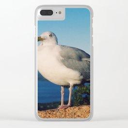 Brooklyn Gull Clear iPhone Case