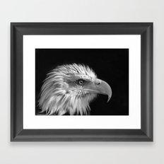 Majestic Bald Eagle Framed Art Print