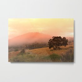 Early Fog In The Hills Metal Print