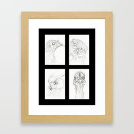 Birds 2 Framed Art Print