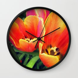 Coral Tulips in Bloom Wall Clock