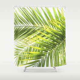 Palm leaves tropical illustration Shower Curtain