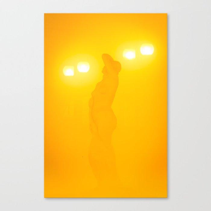 A muse through the fog Canvas Print