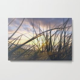 Sun light is coming through green grass in the sun set with sea in the behind and cloudy sky Metal Print