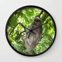 sloths Wall Clocks featuring Sloths in Nature by Amber Galore Design