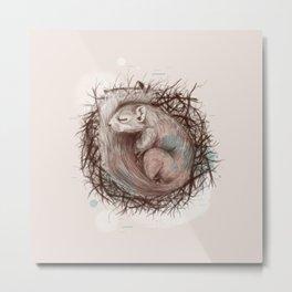 Sleeping Squirrel Metal Print