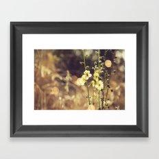 Summer Fields   02 Framed Art Print