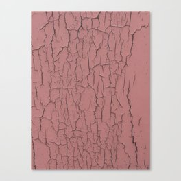 Pink cracked wall paint abstract art wall decor Canvas Print