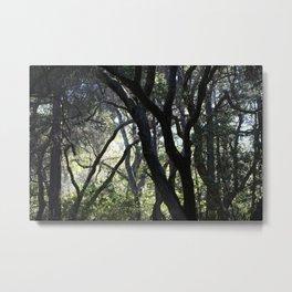 elven woods Metal Print