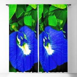 Pegionwings Blue flower Blackout Curtain