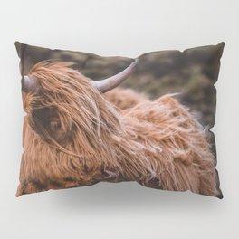 Highland Coo Pillow Sham